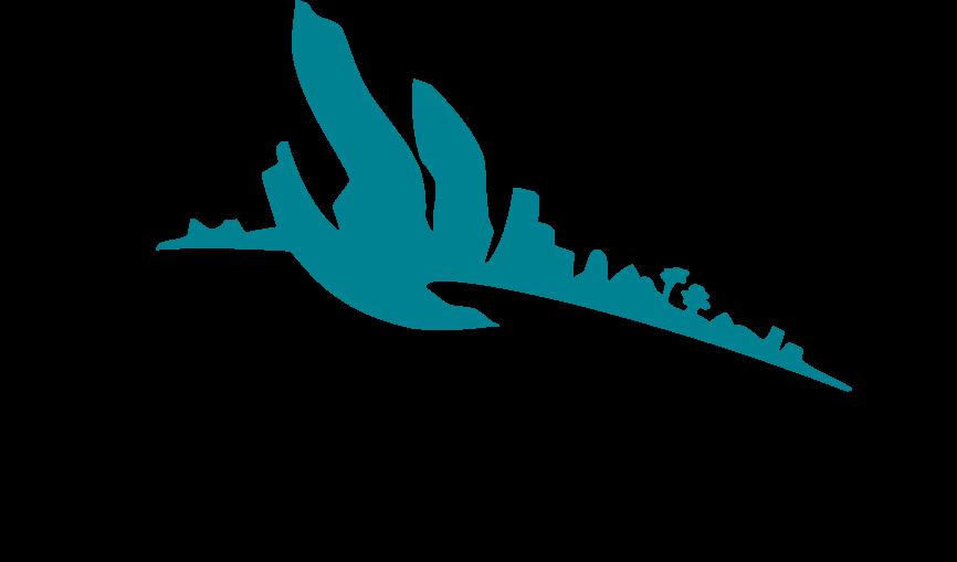 Bedrijfsadvies_logo_2010.png